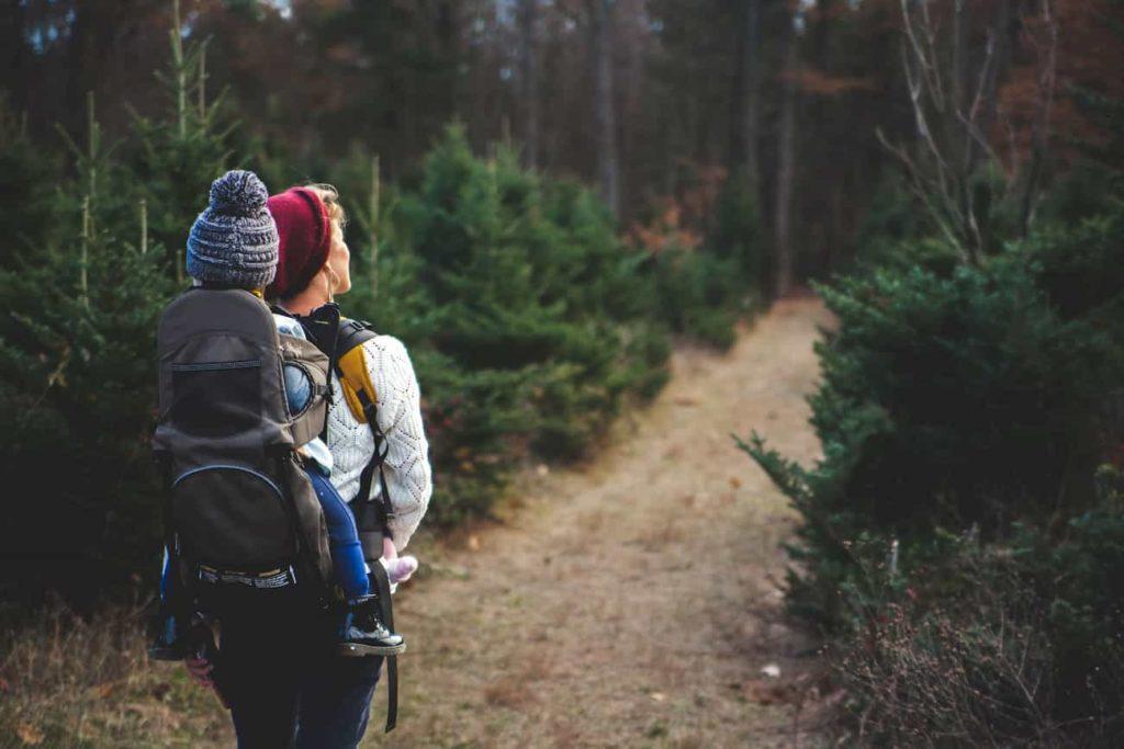 Le top 10 des bonnes résolutions écolo bio pour 2019